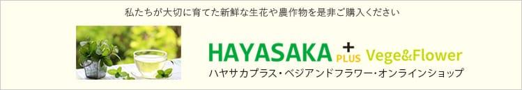 ハヤサカプラス・ベジアンドフラワー・オンラインショップ